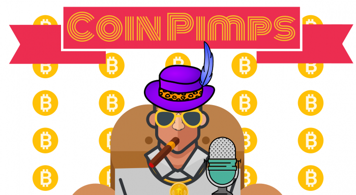 Fundamental Analysis – Coin Pimps